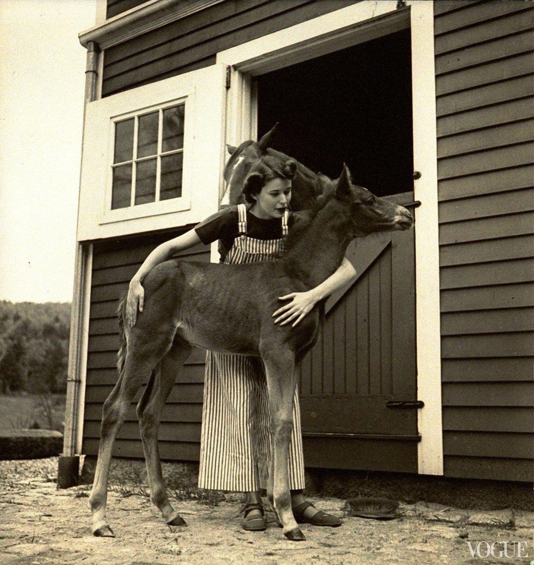 horses-in-vogue-03_153357907374