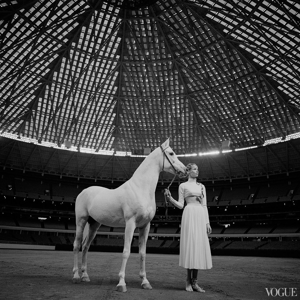horses-in-vogue-06_153400652925